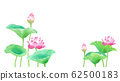 Asymmetry composition of lotus flower watercolor illustration 62500183
