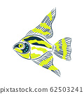 Decorative doodle style fish green and blue colors vector illustration on white. 62503241