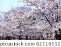 東京櫻花Tojinjin公園 62516532