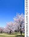 東京櫻花Tojinjin公園 62516689