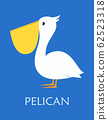 cute pelican isolated 62523318