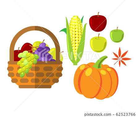 Fruits and vegetables in wicker basket vector illustration 62523766