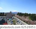 이와키 산 벚꽃 62526051