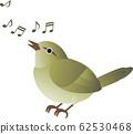 Warbler singing song singing bird bird spring 62530468