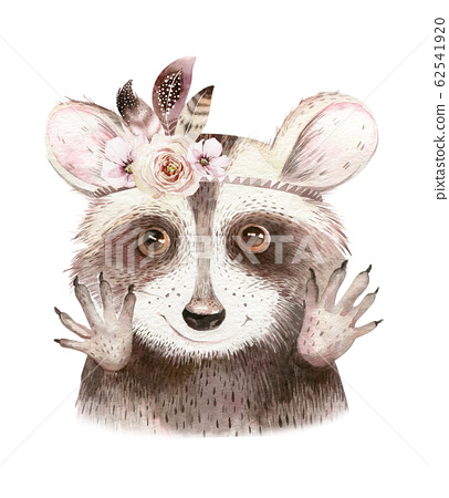 Watercolor boho floral isolated raccoon with feather. bohemian natural background: leaves, feathers, flowers, Artistic decoration illustration. Save the date, weddign design, nursery illustration 62541920