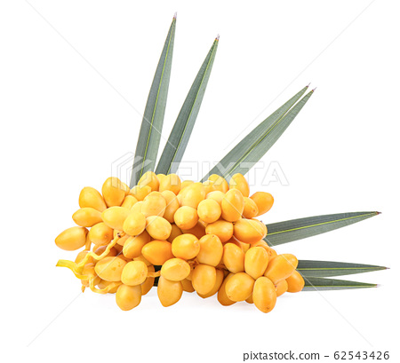 yellow date palm fruit on white background 62543426
