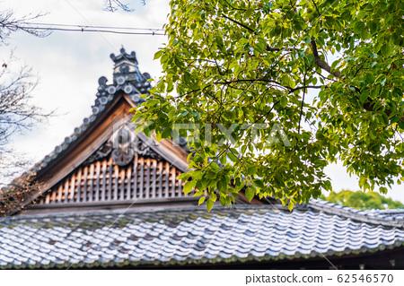 교토 青蓮院 宸殿 지붕 62546570