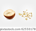 Ripe and dried hazelnuts 3d realistic 62550178
