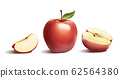 Apple and cross section 62564380