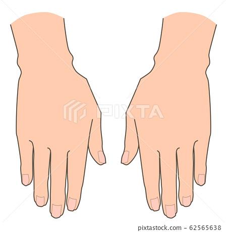 手的手 62565638