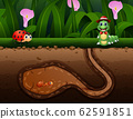 Background scene with insects in the ground 62591851