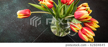 Red yellow tulips in glass vases 62604645