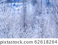 """美北冬季""""北海道""""白霜和鑽石塵 62618264"""
