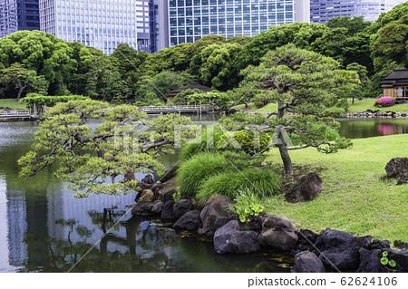 (도쿄도) 도쿄의 평화 공간, 하마 리큐 은사 정원 초여름 62624106