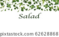 3D realistic lamb s lettuce on white background. Fresh green salad with copy space for your text. Vector illustration 62628868