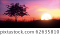 Colorful Sunset with tree panoramic 62635810