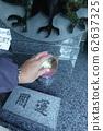 結論花園川越熊野神社川越 62637325