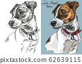 Vector Jack Russel terrier in color and black and 62639115