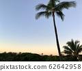 [Hawaii] Sunrise in Hawaii feels good! Hawaii wants to get up early (horizontal size) 62642958