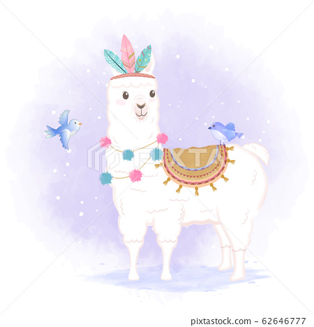 Cute Llama and birds hand drawn cartoon 62646777