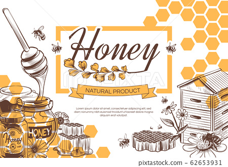 Sketch honey background. Hand drawn sweet dessert natural organic honeycomb, beeswax and bee, beekeeping banner, poster vector design 62653931