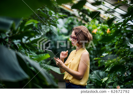 Young woman standing in greenhouse in botanical garden, using tablet. 62672792