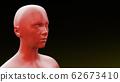 skin medical condition eczema burn disease 3D 62673410