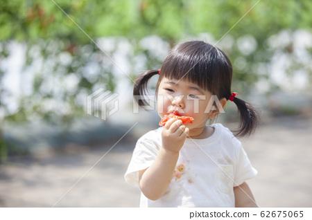 吃西紅柿的女孩 62675065