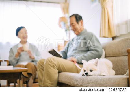 狗和高級 62676783