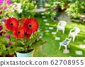 flowers in the garden, view from above 62708955