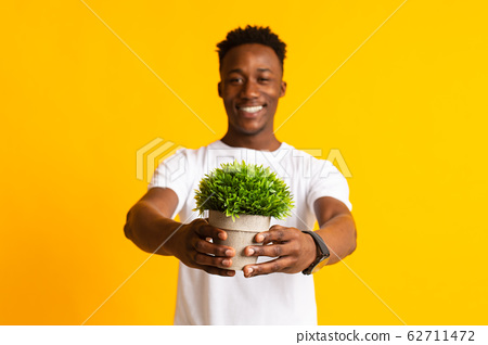 Young smiling african man holding pot with green plant 62711472