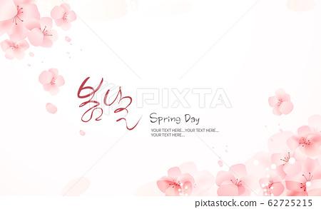 spring49 62725215