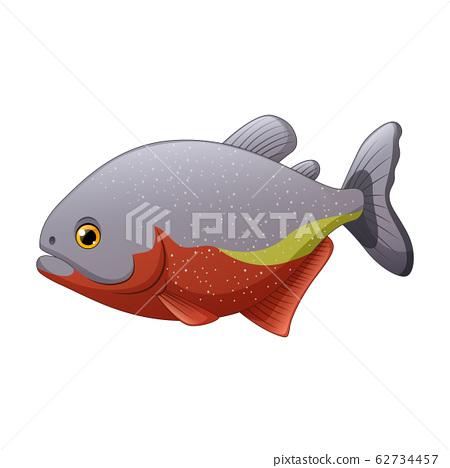 Cartoon piranha fish isolated on white background 62734457