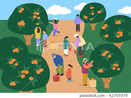 Beautiful landscape in Jeju, Korea, flat design style illustration 007 62765979