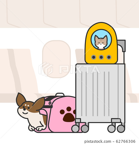 Cute and lovely animals, pets icon illustration 006 62766306