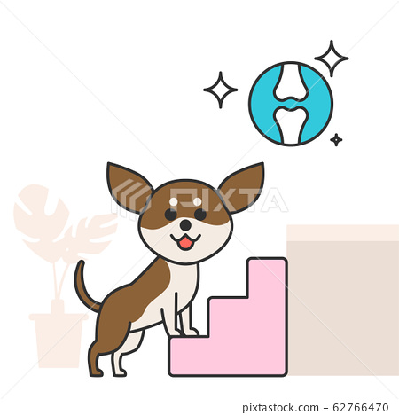 Cute and lovely animals, pets icon illustration 031 62766470