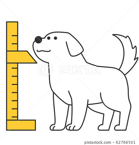 Cute and lovely animals, pets icon illustration 023 62766501