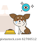 Cute and lovely animals, pets icon illustration 034 62766512