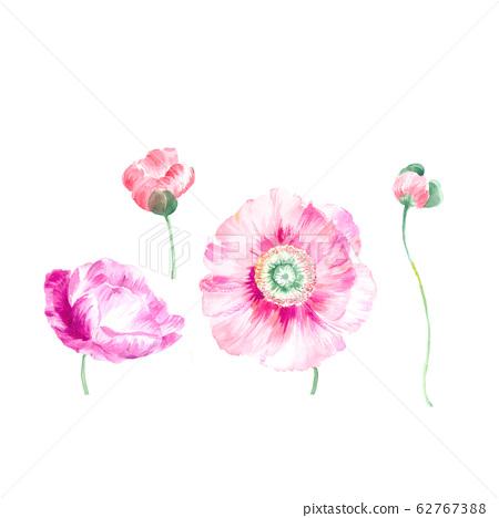 美麗的水彩花卉素材,優雅手繪花 62767388