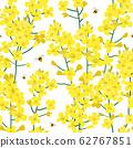 Seamless rape plant pattern, vector flower background. Texture for print, spring summer fashion, textile design, fabric, honey shop website, wallpaper 62767851