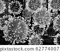 The new oronavirus 2019-nCov is a new coronavirus 62774007