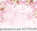 櫻花_背景粉紅色 62779180