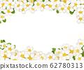 白花背景 62780313