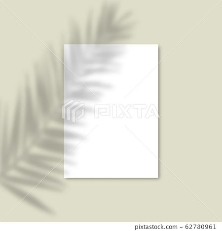 Shadow Overlay Palm Leaf Vector Mockup A4 Paper Stock Illustration 62780961 Pixta Find the best free stock images about tropical leaves. pixta