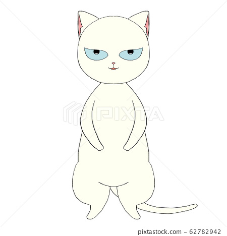 White cat with bad face 62782942