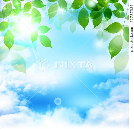 신록 잎 녹색 배경 62787385