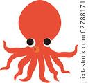 octopus 62788171