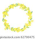 含羞草花束图 62790475