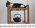 고양이와 전통 공예 62813676