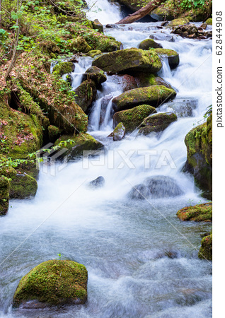 rapid water stream in the forest 62844908